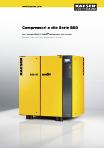 Compressori a vite Serie BSD